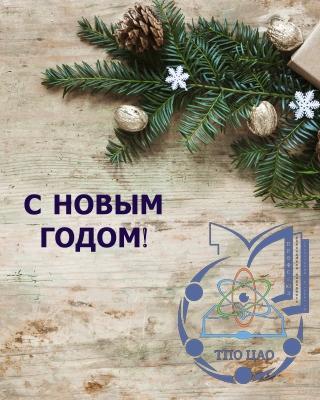 shary-novyi-god-rozhdestvo-podarki-christmas-balls-wood-ne-2.jpg